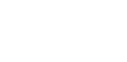 Cory Palfalvi